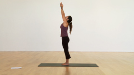 Introduction to the concept of Vinyasa - incorporating Breath, Bandhas and Drishti.  In this segment we introduce the 1/2 Vinyasa and Surya Namaskar A.