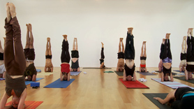 Full Vinyasa Primary Series
