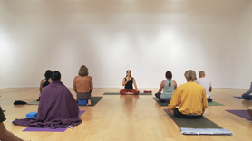 The focus of this class is Pranayama. We begin with a discussion of Pranayama and an introductory practice, then we do the half primary with the focus on the breath and the subtle energy body.