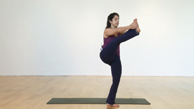 Condensed Primary Series for Busy Yogis